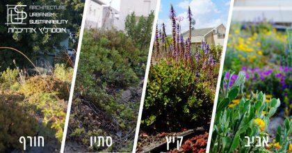 גגות ירוקים במבני ציבור בישראל