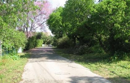 צל רחובות היסטוריים