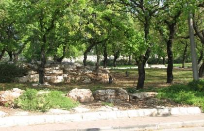 תכנון אזורי – מבנייה ירוקה לאדריכלות אקולוגית במרחב הכפרי
