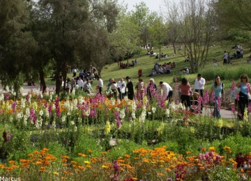 Public gardens across globe admire new model in Jerusalem // כתבת עיתונות